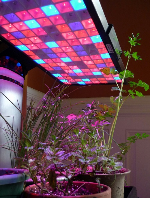 نورپردازی گلخانه لامپ رشد گیاه