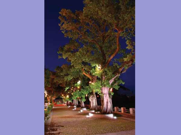 نور پردازی پیاده رو توسط چراغ های دفنی