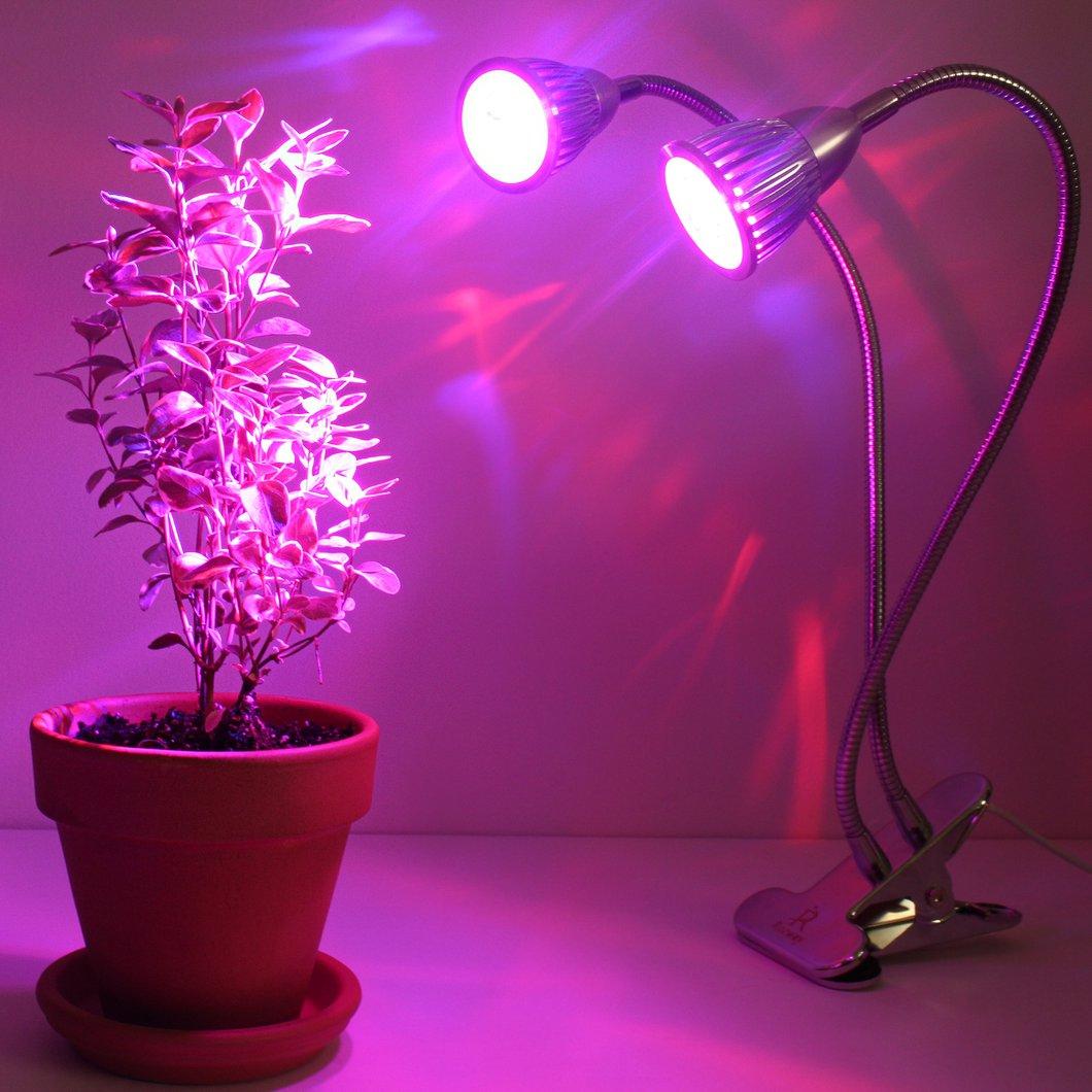 لامپ فتوسنتز رشد گیاه