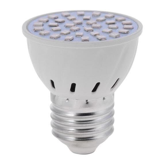 لامپ برای رشد گیاه