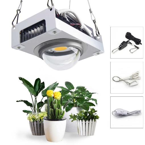 لامپ برای رشد گیاه 2