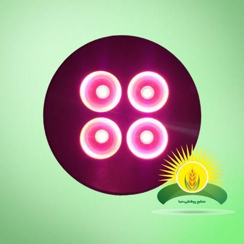 چراغ رشد گیاه کابینتی 1