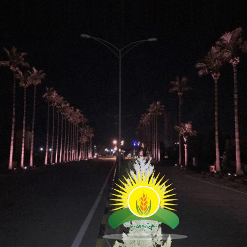 نورپردازی بلوار